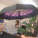 逆さに開く傘が便利すぎ・・そしてKちゃん卒業です